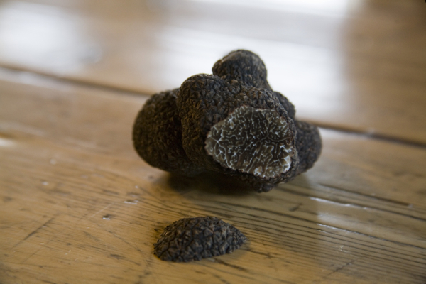 Truffles: The Ultimate Luxury