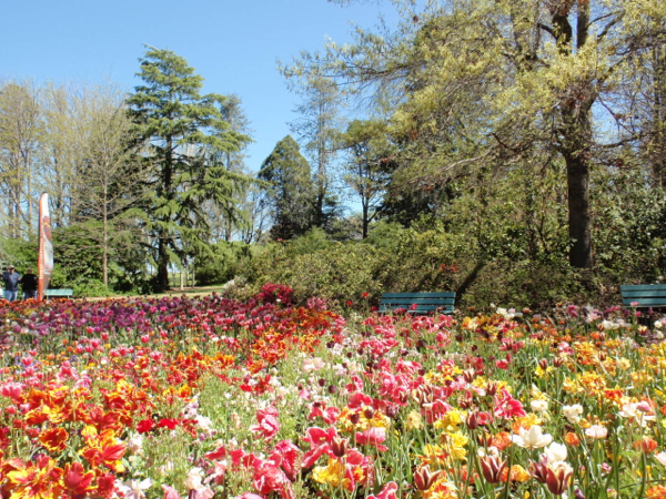 Floriade: Time To Stop And Smell The Flowers