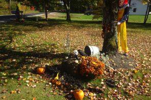 Do you know where Halloween originated?