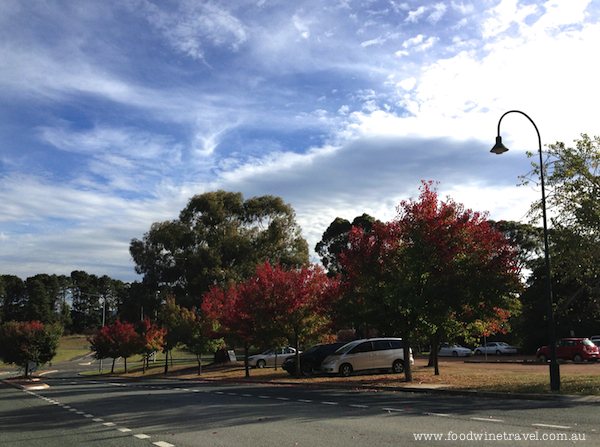 Autumn at Gold Creek, Canberra.