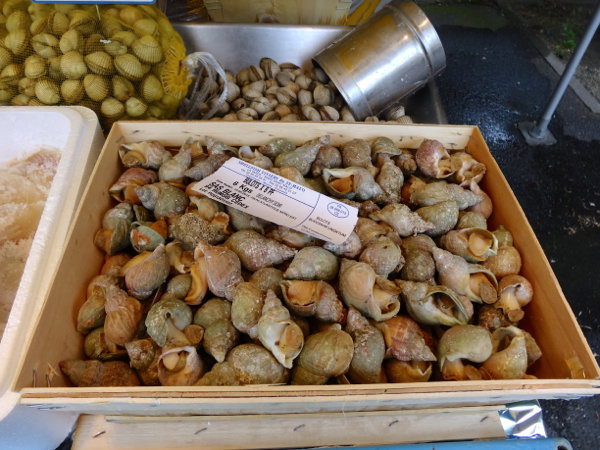 Snails at fresh food market at Conflans Ste Honorine by the Seine River near Paris.