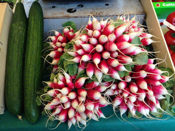 Radishes at fresh food market at Conflans Ste Honorine on the River Seine