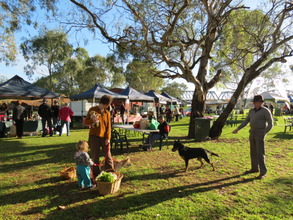 Murray Bridge Farmers Market