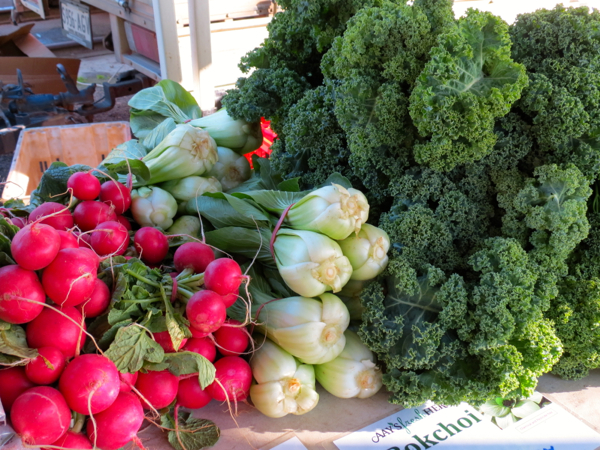 Murray Bridge Farmers Market is one of the stops on Captain Cook Cruises' Murray Princess cruise.
