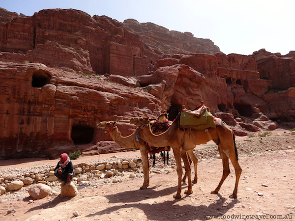 Petra, Jordan, Christine's top travel experiences for 2013, www.foodwinetravel.com.au