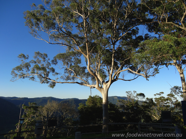 www.foodwinetravel.com.au, Christine Salins, Killarney, Southern Queensland Country Tourism, Spring Creek Mountain Café & Cottages, Queen Mary Falls Caravan Park, Queen Mary Falls, Cambanoora Co, Southern Downs Harvest lunch, Melrose Station, Killarney Butcher, Carr's Lookout, Cambanoora Gorge.