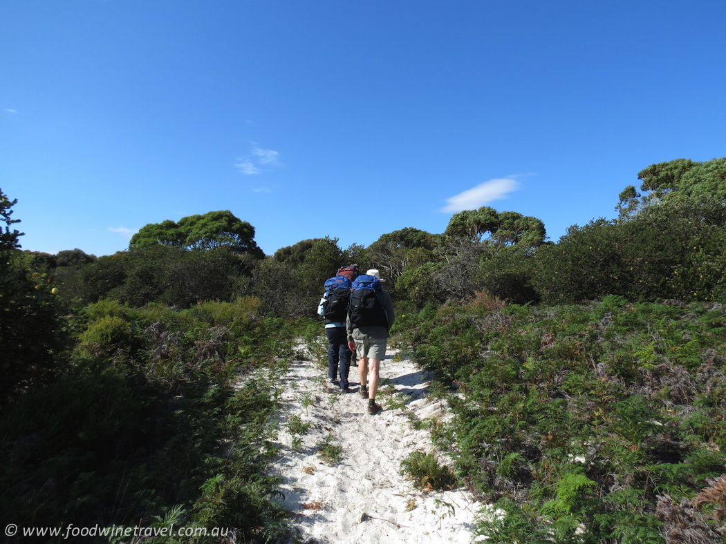Slow down and see the world on foot. Here are 5 fabulous walking holidays in Australia, Spain, France and Switzerland.