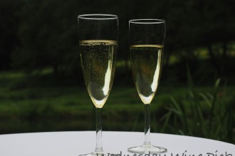 Wednesday Wine Pick, Chandon Blanc de Noirs, Yarra Valley wineries, sparkling wine