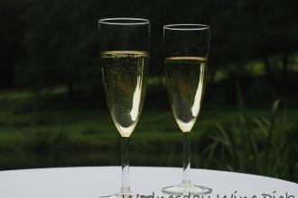 www.foodwinetravel.com.au, Primo Estate NV Primo Secco, prosecco, Italian sparkling wines, McLaren Vale wine, Australian sparkling wines, prosecco in Australia, wines from the Veneto region.