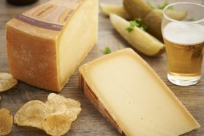 Australian Grand Dairy Awards | Cheese Tasting