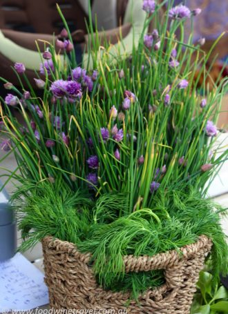 Garlic Chives at Fireweed Community Market Whitehorse Yukon