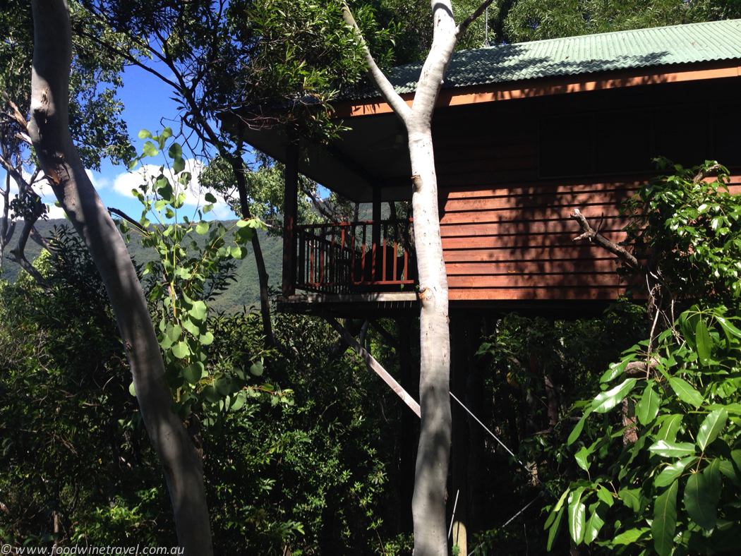 Thala Beach bungalow in the treetops