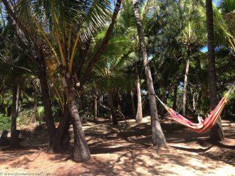 Thala Beach hammock