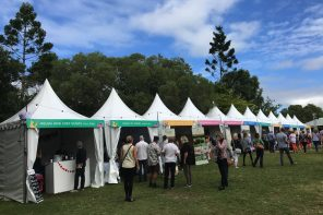 Noosa Food & Wine Festival: The Woods Wine & Produce Village