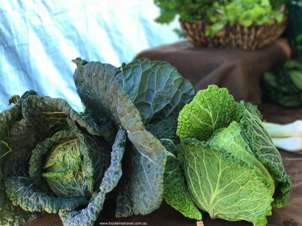 Ballina Missingham Farmers Market Cabbages