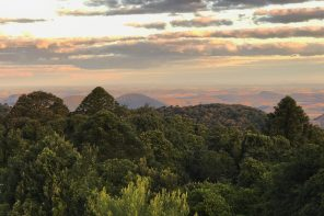 Bunya Mountains Skyline-imp