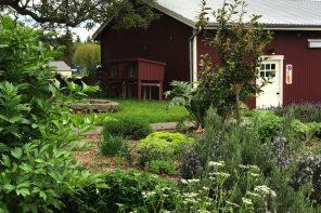 Orchard Kitchen Whidbey Island Herb Garden