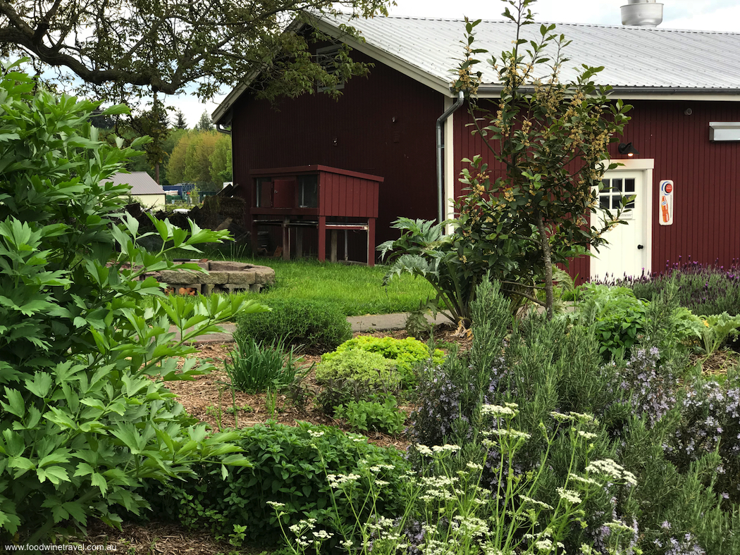 Top Food & Wine Experiences in 2018 IFWTWA Whidbey Island Trip Orchard Kitchen Herb Garden