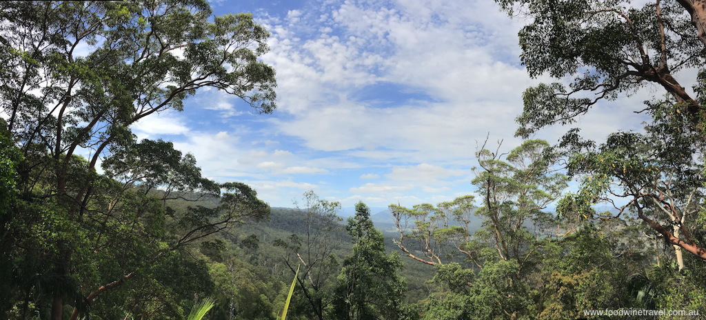 Tamborine Mountain, Witches Falls, Queensland's First National Park