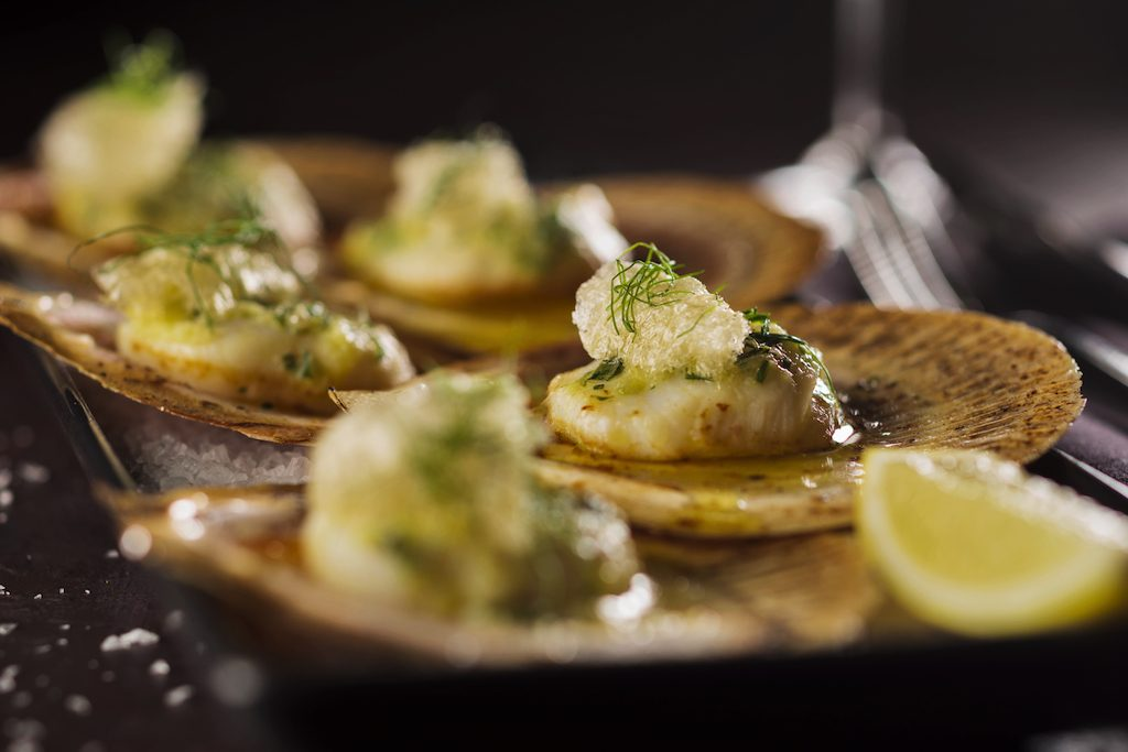 Black Hide Grilled Hervey Bay Scallops with lemon butter accompanied by Teifenbrunner Pinot Grigio