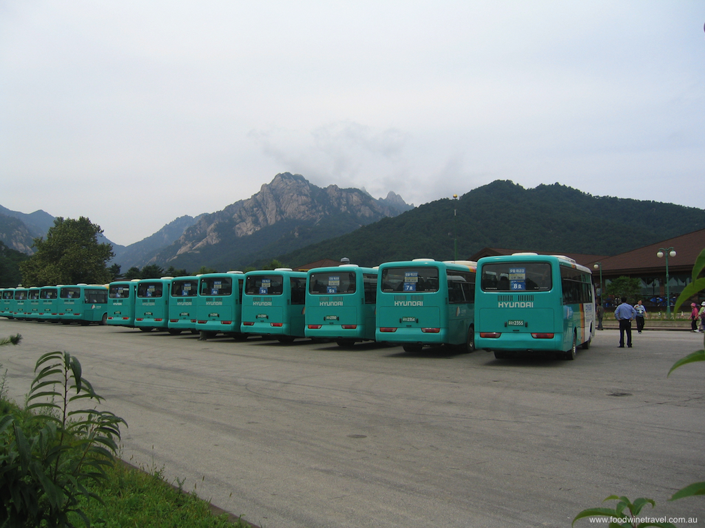 North Korea Hyundai buses