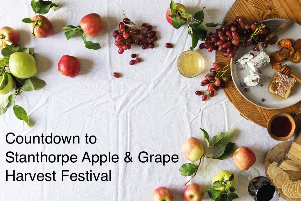 Granite Belt Stanthorpe Apple and Grape Harvest Festival Apples on Table With Promo