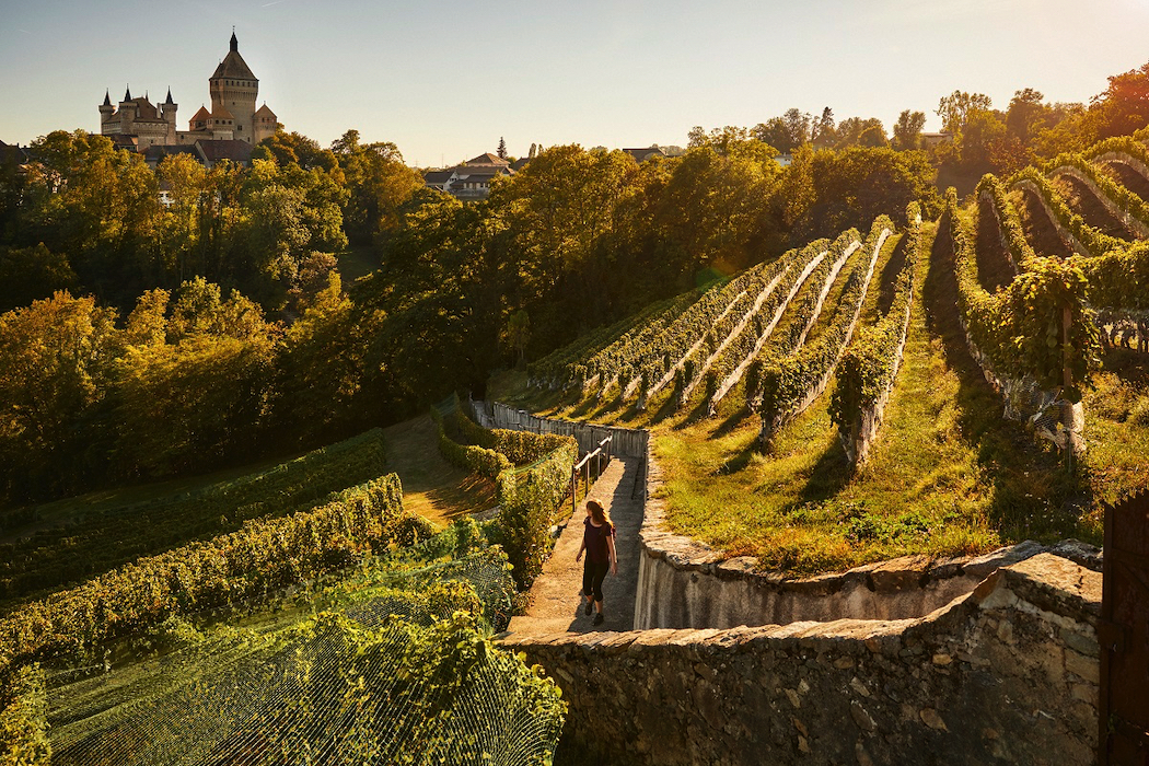 Switzerland's top castle winery experiences: the six-storey high Vufflens Castle has views over Lake Geneva.