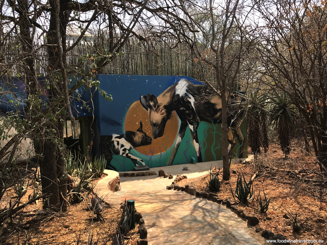 Wild dogs depicted on the wall of one of the starbed suites at Jaci's Safari Lodge.