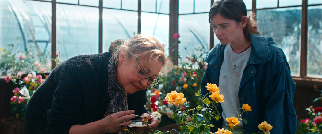 French Film Festival 2021 The Rose Maker is a gentle comedy in the grand French tradition.