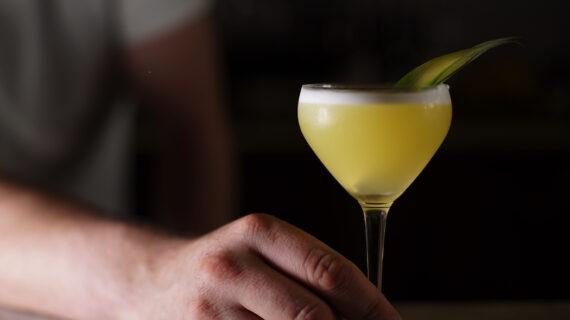 Pisco De Carral Queensland Yacht Club cocktail