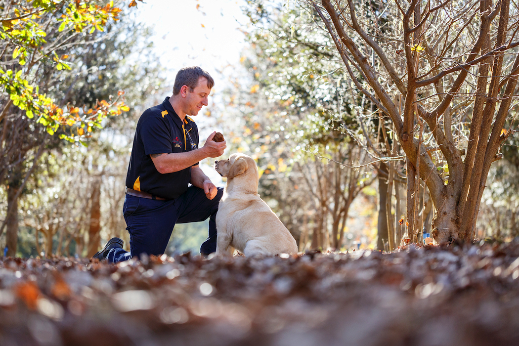 Gavin Booth with truffle hunting dog, Molly, on the farm in Manjimup. Photo © Jessica Wyld.
